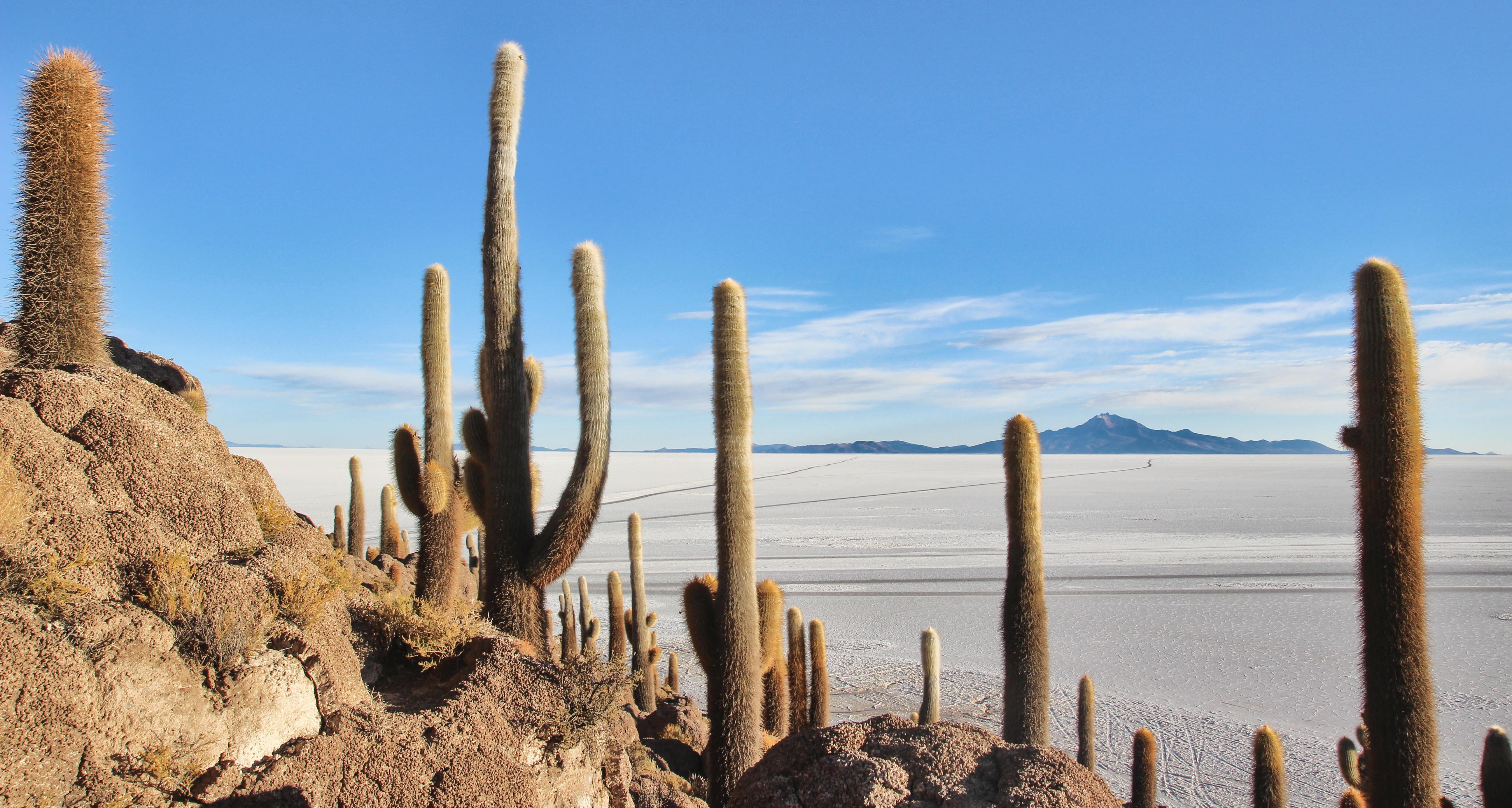 Salar de Uyuni in Bolivia is on many people's bucket list