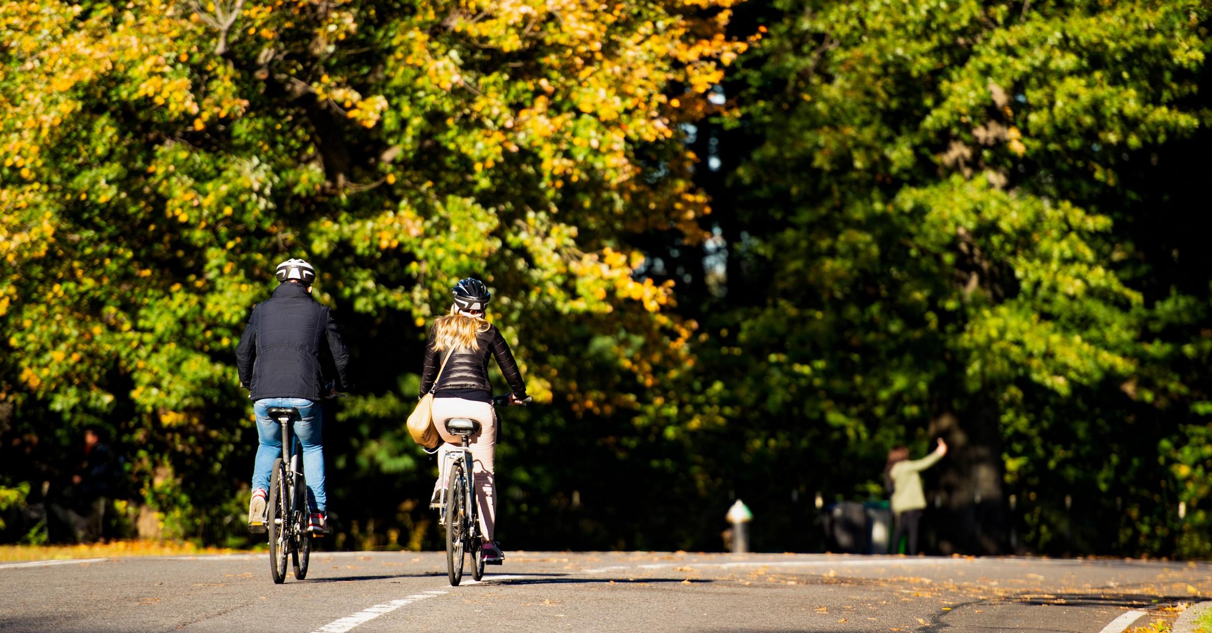 A couple ride bikes in Central Park, Manhattan
