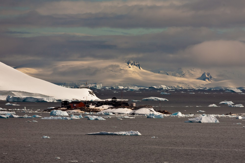 Antarctica - Film & TV